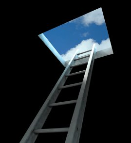 Ladder going from dark room to bright sunlight.   WebGuild websites are a breath of fresh air.